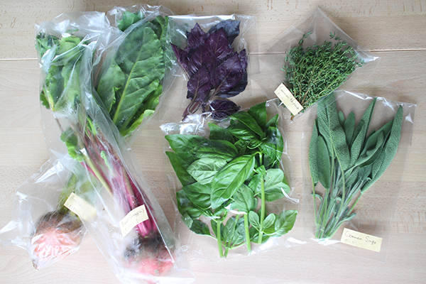 Nora's herbes & beets のらのハーブとビーツ