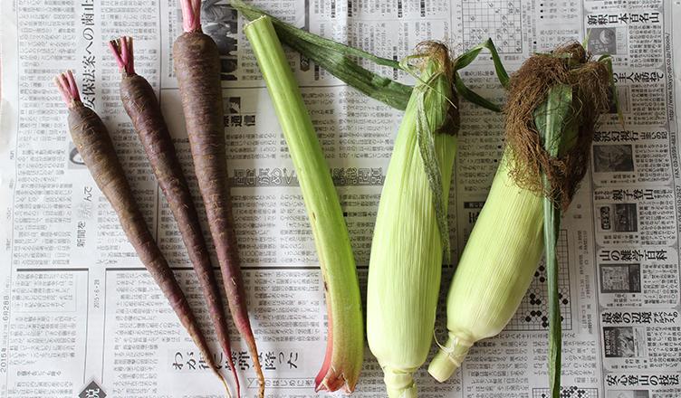 のらの野菜 LifeStying by edochiana