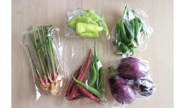 馬場修一郎農園の野菜 LifeStying by edochiana